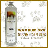 *KING WANG*【 WAMPUM SPA 】強力蛋白質修護液-500ML