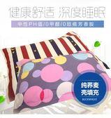 枕蕎麥枕成人純蕎麥皮枕頭枕頭芯護頸枕