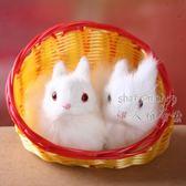 皮毛仿真動物小兔子 特色中秋禮品 DA3367『伊人雅舍』