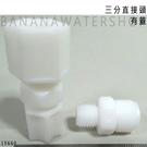 【Banana Water Shop】1566-3分直接頭(有蓋)