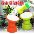 金德恩 台灣製造 灑水頭 - 綠橘隨機色 一組4入