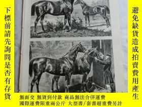 二手書博民逛書店【罕見】1883年木刻版畫《著名的種馬》(Berühmte He