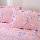 磨毛枕套純棉枕頭套簡約單人全棉單人加厚枕頭芯套48X74cm     俏女孩