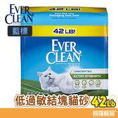 EVER CLEAN-藍標 低過敏結 塊貓砂 42LB【寶羅寵品】