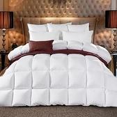 羽絨被 寢具-面格設計保暖蓬鬆白鵝絨雙人棉被3色72aa1【時尚巴黎】
