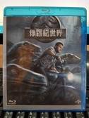 挖寶二手片-Q10-022-正版BD【侏儸紀世界 3D單碟】-藍光電影(直購價) 海報是影印