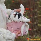 小寵蜜袋鼯倉鼠外出兔子包刺猬荷蘭豬冬季保暖外帶手提側背包【小獅子】