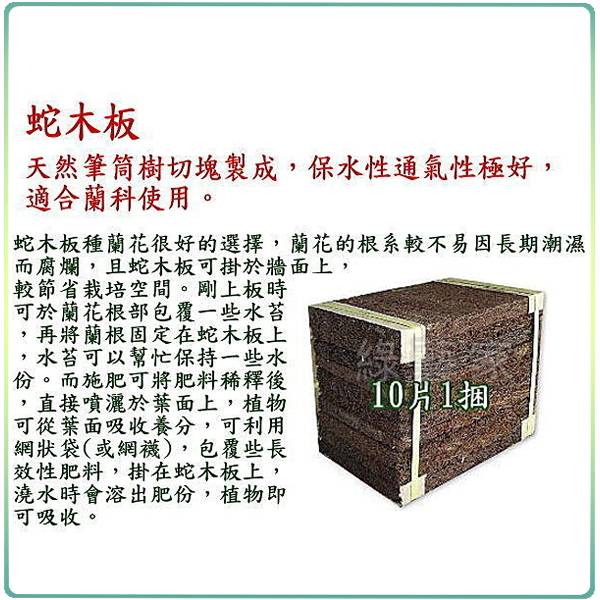 【綠藝家001-AA88】4吋蛇木板單片裝