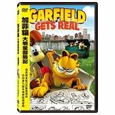 加菲貓:大明星歷險記DVD