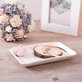 粉石蓮擺飾盤-生活工場