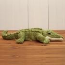 【專區滿618享8折】皮皮鱷魚玩偶(小)40CM-生活工場