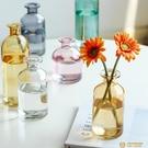花瓶擺件客廳插花干花北歐玻璃透明水養桌面裝飾【小獅子】