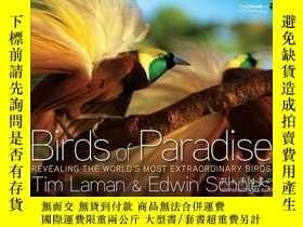 二手書博民逛書店Birds罕見of Paradise 天堂鳥 英文原版Y2106