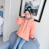 女童加絨連帽T恤加厚秋冬裝2019新款中大兒童女孩打底衫洋氣網紅上衣 Cocoa