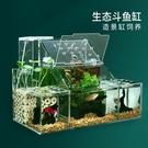 生態斗魚缸孔雀魚繁殖孵化專用隔離盒循環水過濾創意桌面斗魚排缸 小山好物