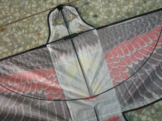 特大老鷹造型立體老鷹風箏(特大立體布面碳纖維架162cm X 79cm)/一隻入{定180}~603608