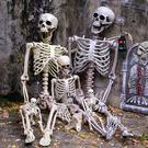 萬聖節道具萬聖節裝飾品恐怖掛件仿真人體骨骼模型骷髏骨架酒吧鬼屋道具擺件 CY潮流