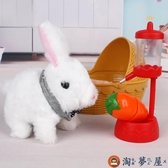 兒童家家酒玩具電子寵物小兔子毛絨兒童電動女孩【淘夢屋】
