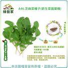 【綠藝家】A46.芝麻菜種子1000顆(...