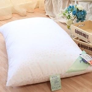 【R.Q.POLO】日本東麗防蹣抗菌壓縮枕/枕心枕頭(2入)