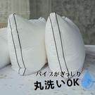 【可超取】3D立體雙車邊可水洗羽絲絨枕/...