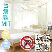 蚊帳 - 單人[懸掛式綁繩] 超密度透氣網 吊掛 寢居樂 台灣製