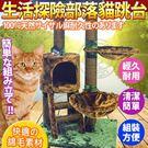 【培菓平價寵物網 】寵愛物語生活探險系列》部落貓跳台CT27