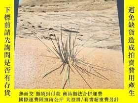 二手書博民逛書店Planet罕見Earth ARID LANDS Time-Life Books 1984年精裝大開本Y286