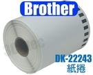(僅紙捲) 1入裝 副廠 DK-22243 Brother 標籤帶 102mm x 30.48M 連續型 標籤機