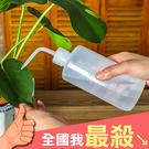 500ml 澆水器 澆花器 噴嘴 多肉植物 植栽 植物 盆栽 加水器 擠壓式尖嘴澆水壺【N273】米菈生活館