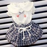 夏季薄款透氣狗狗裙子寵物衣服博美約克夏貴賓比熊泰迪衣服