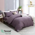 【BEST寢飾】天絲床包兩用被四件式 雙人5x6.2尺 莫娜-紫 100%頂級天絲 萊賽爾 附正天絲吊牌