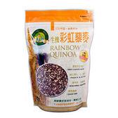 肯寶 KB99 生機彩虹藜麥 (480g) 2包特惠 全素食品  無麩質  優質完全蛋白
