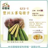 【綠藝家】G15-1豐川玉米筍種子5.5克(約20顆)