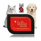 Lilly 寵物毛髮去除器 Brush Mini Pet Hair Detailer Dog Hair Remover [2美國直購] _o98