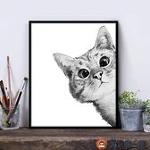 diy數字油畫卡通動漫物貓咪填色油彩畫ins裝飾畫【淘夢屋】