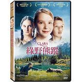 綠野熊蹤DVD