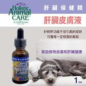 【毛麻吉寵物舖】Azmira 愛獅馬【肝臟皮膚液】1oz 犬貓/寵物保健