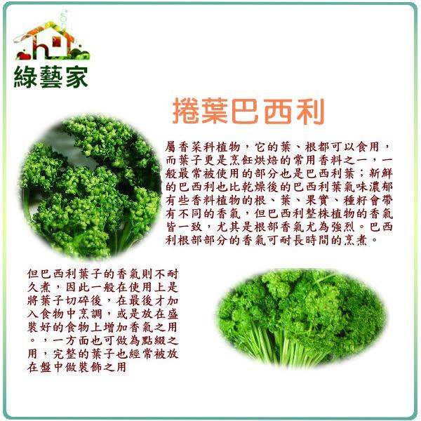 【綠藝家】F11.捲葉巴西利(西洋香菜、歐芹)種子300顆
