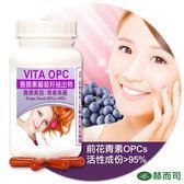 【赫而司】VITA OPC-1養顏素葡萄籽膠囊(60顆/罐)前花青素養顏美容