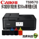 【搭250cc專用填充墨水五色方案】Canon PIXMA TS9570 A3+多功能相片複合機 含原廠墨水匣
