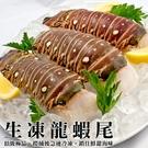 每尾579元【海肉管家-全省免運】大規格尼加拉瓜海龍蝦身X1尾(每尾210g±10%)
