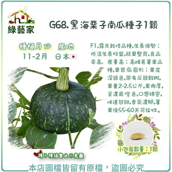 【綠藝家】G68.黑海栗子南瓜種子1顆