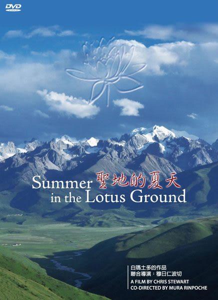 聖地的夏天 DVD (音樂影片購)