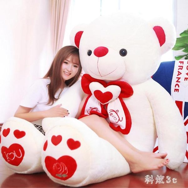 可愛抱抱熊毛絨公仔玩具泰迪熊貓公仔布娃娃超萌大熊女孩睡覺生日禮物 PA5901『科炫3C』