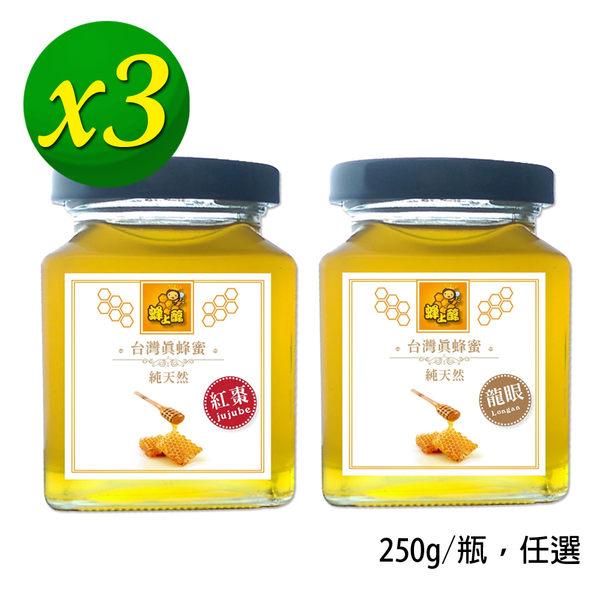 【蜂上醇】台灣真蜂蜜x3瓶(250g/瓶)_龍眼蜂蜜、紅棗蜂蜜 任選~純天然~SGS檢驗合格