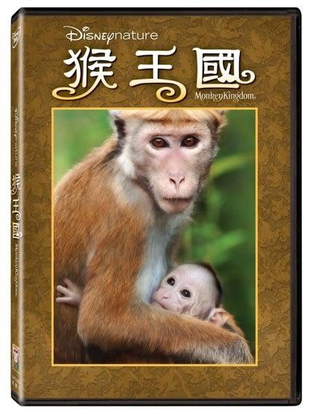 猴王國 DVD   免運  (購潮8)