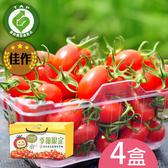 百分百甘ㄚ蜜-玉女小蕃茄4台斤含運組