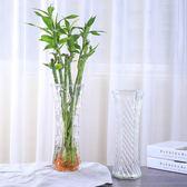 簡約玻璃花瓶六角透明大號水培富貴竹百合鮮花插花瓶桌面家用客廳