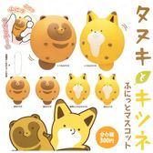 全套6款【日本正版】狸貓與狐狸 捏捏吊飾 扭蛋 轉蛋 吊飾 捏捏樂 軟軟 KITAN 奇譚 - 179442